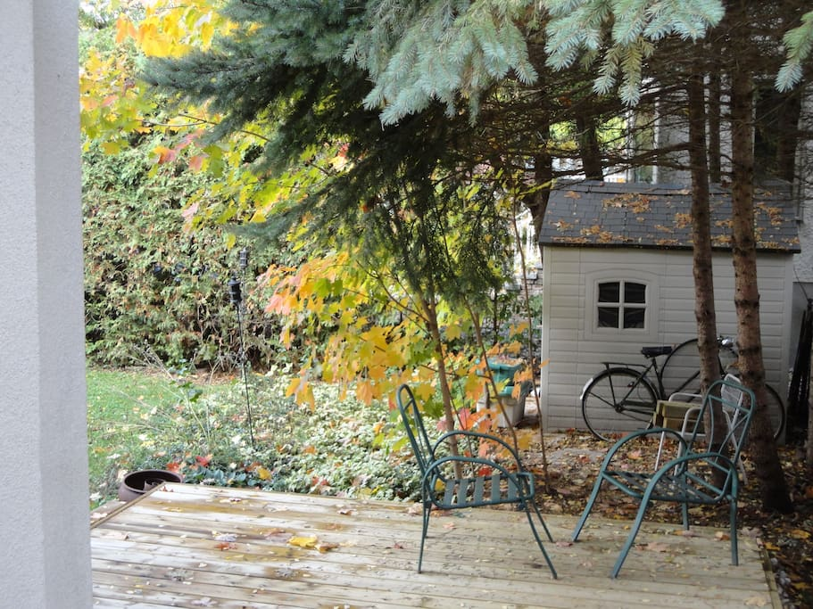 In the Fall, back yard of the house, deck.
