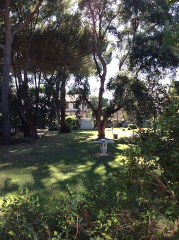 Bio house garden