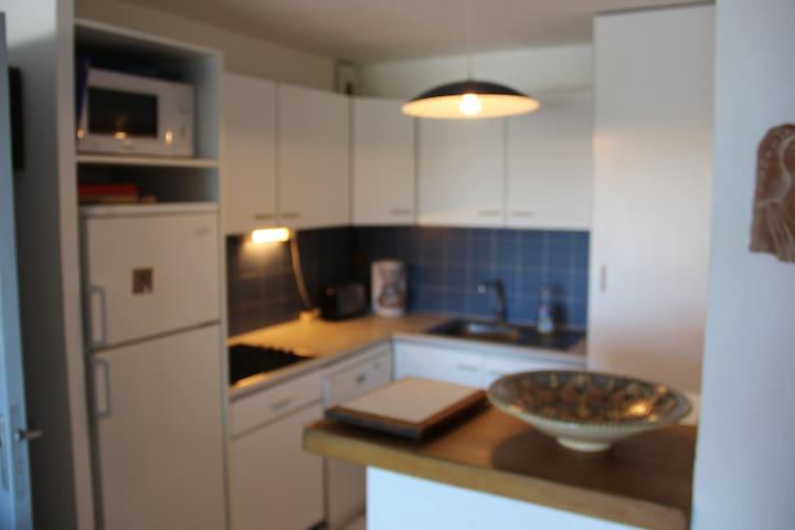 cuisine avec lave vaisselle, machine à laver, plaque vitro, congélateur, micro onde et four...