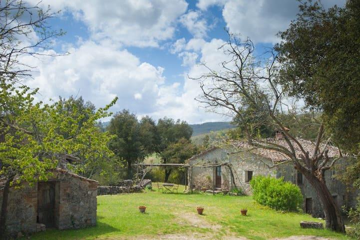 Montecchino at Spannocchia - Chiusdino - House