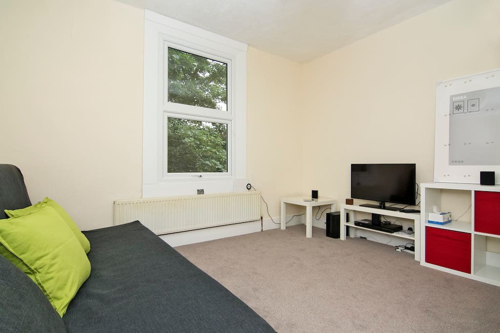 Shared Living Room with TV with blue ray and sofa bed