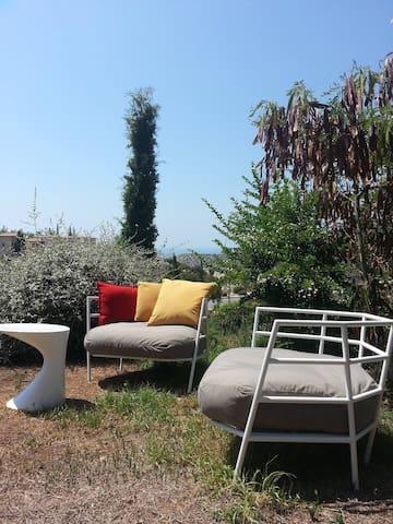 Garden -front view