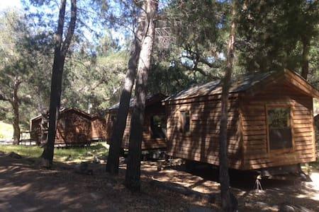 Wilderness Cabin #1 (Figueroa) - Kisház