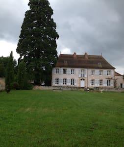 RAGOT - Saint-Maurice-lès-Châteauneuf - Kasteel