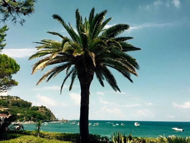 Vacanze  a Capo d'Orlando (Me). - Capo d'orlando - Radhus