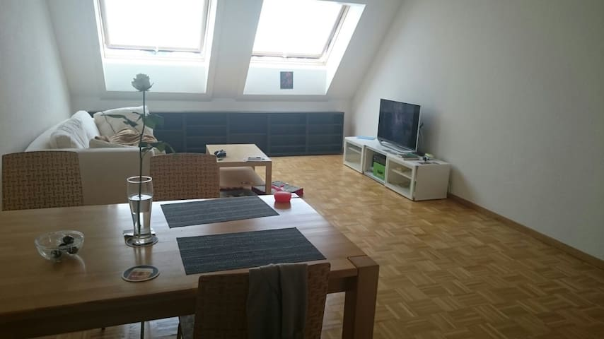 Nice, cozy apartment in Zurich - Zurych - Apartament
