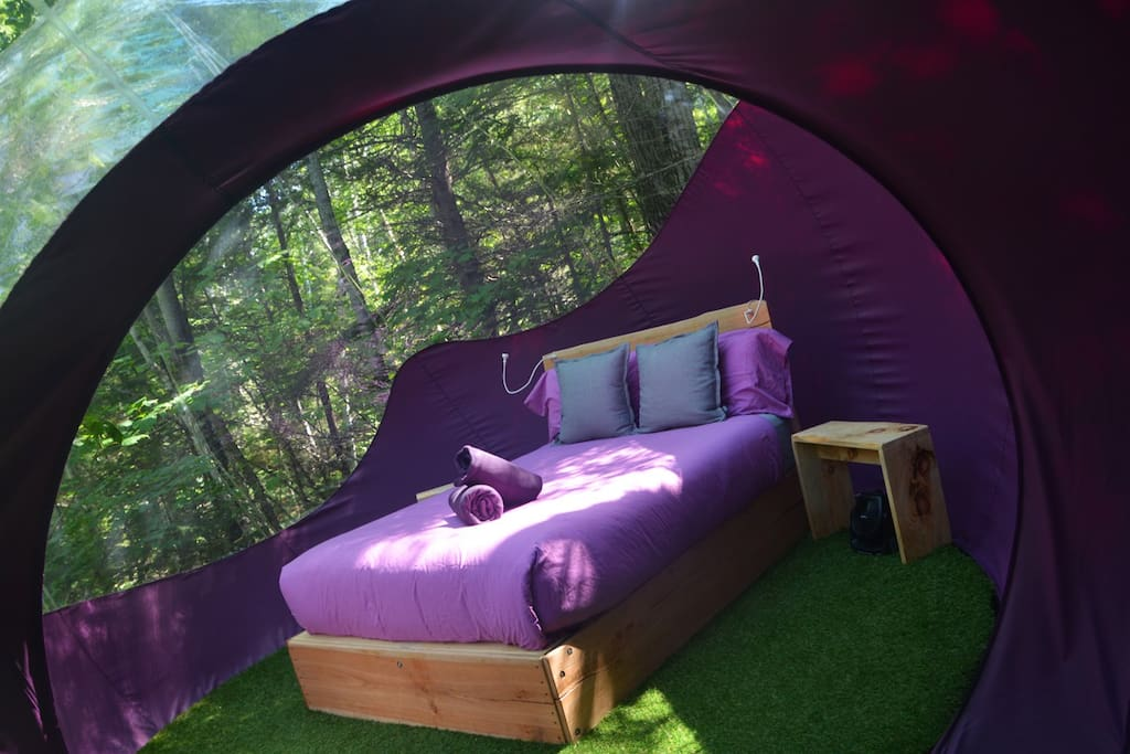 double bulle perch e insolite cabanes dans les. Black Bedroom Furniture Sets. Home Design Ideas