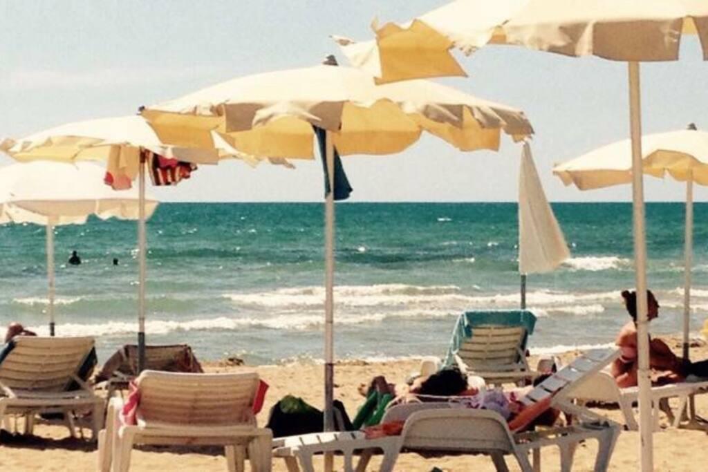La spiaggia con tutti i confort ( lettini, ombrelloni, pedalò, canoa, Bananone, bar...)