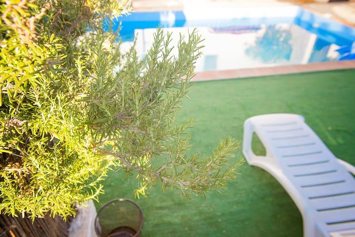 Subterranean Style + Gardens + Swimmingpool + Spa