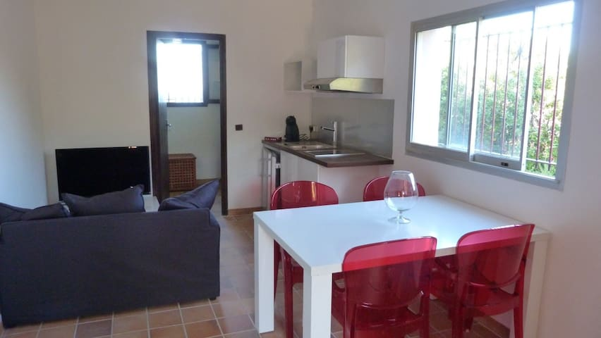 STUDIO BORD DE MER - Pietracorbara - Appartement