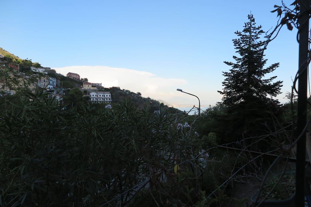 Edera borgo mena case in affitto a vietri sul mare for Case ricoperte di edera