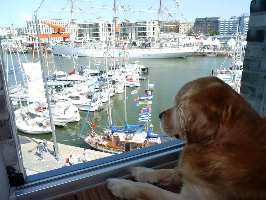 Blick von der Loggia zur Marina, Lieblingsplatz unseres Hundes