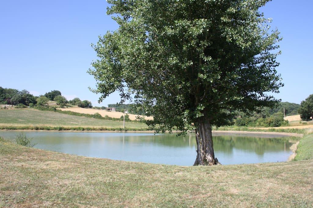 Lac à proximité