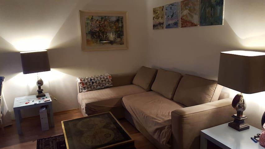 Classic Reykjavik Apartment - Reiquiavique - Apartamento