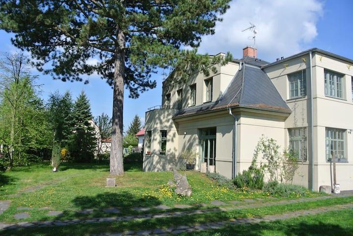 Luxurious 1920's villa near forest