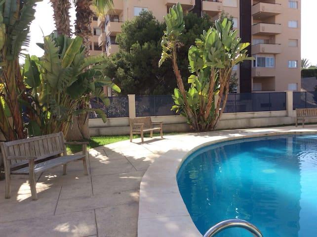 Отличные апартаменты рядом с пляжем - Ла Сения - Apartemen