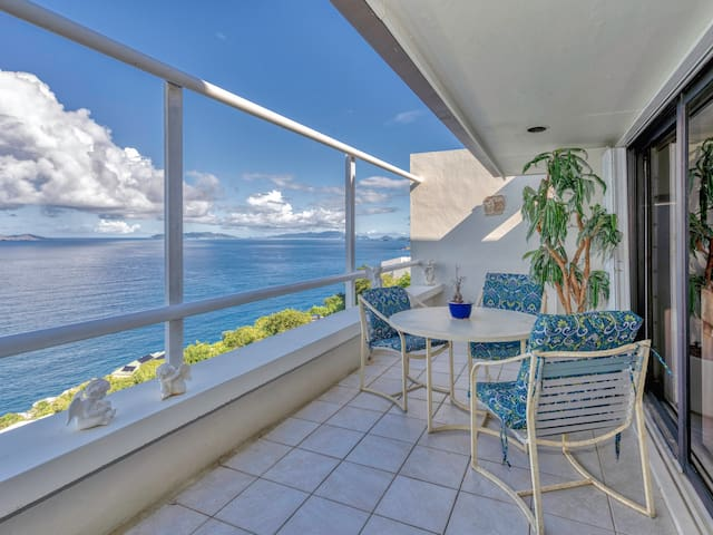 Spacious 1BR condo with a million dollar view!