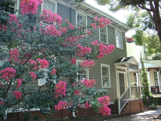 Mimosa House in Historic Savannah - Savannah