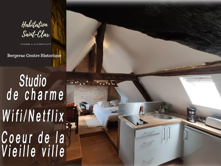 Centre Historique-Studio Le Colombier-Wifi/Netflix