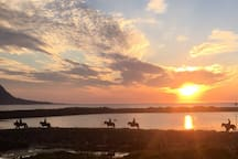 Horse riding in the sunset