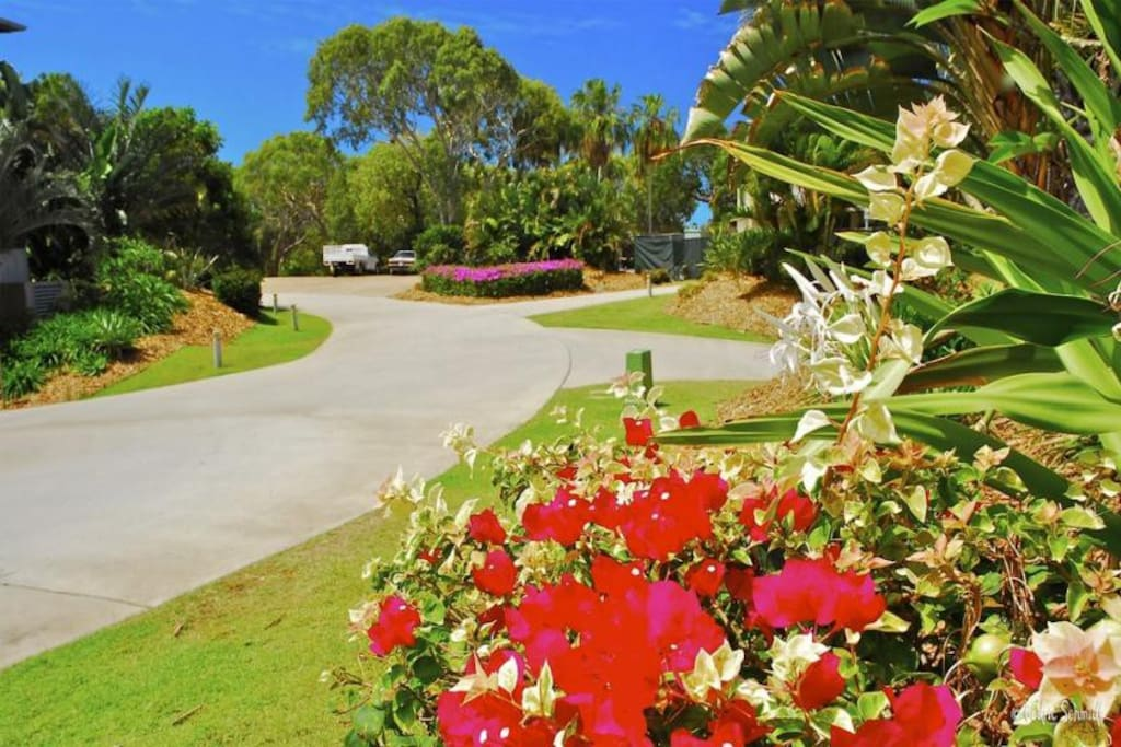 Resort drive way leading to surrounding grounds.