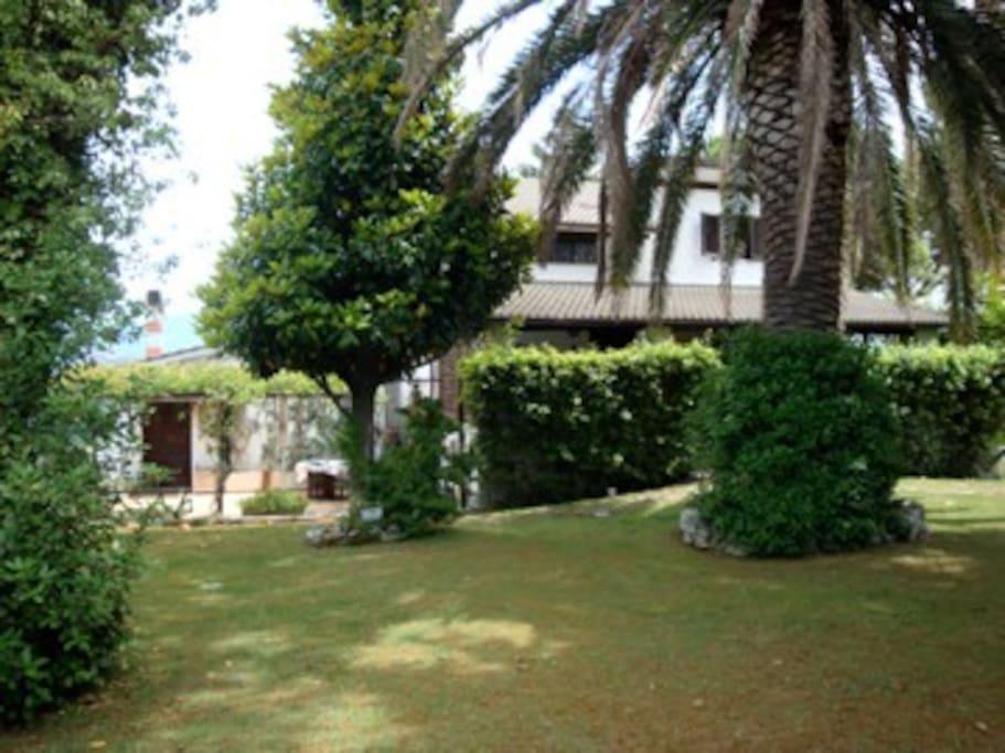 Esterno -giardini