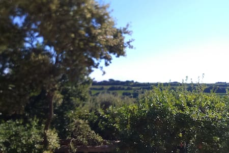villa plein pied - Tavel