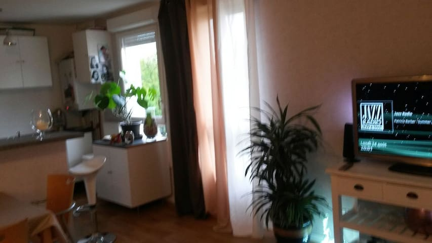 Jolie chambre meublée avec balcon - Bois-Guillaume - Huoneisto
