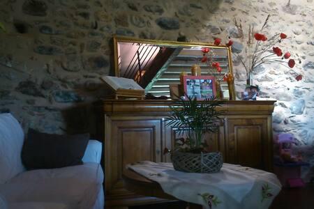 Spacieux soigné et confortable - Latour-de-France