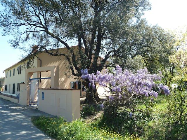 Appartamento Al Vecchio Leccio - Pistoia - Apartment