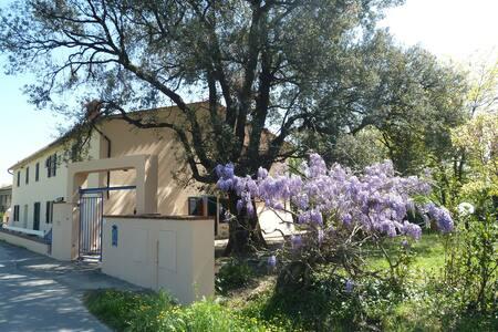 Appartamento Al Vecchio Leccio - 皮斯托亚 - 公寓