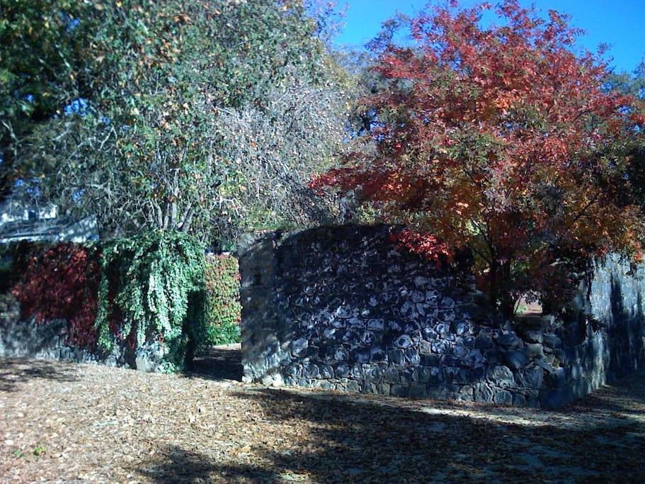 The 1880's ruin of our original winery building.
