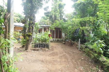 Nuwan Homestay - Канди