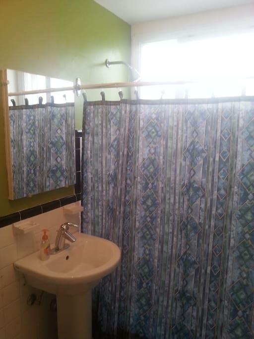 Guests shower / bath