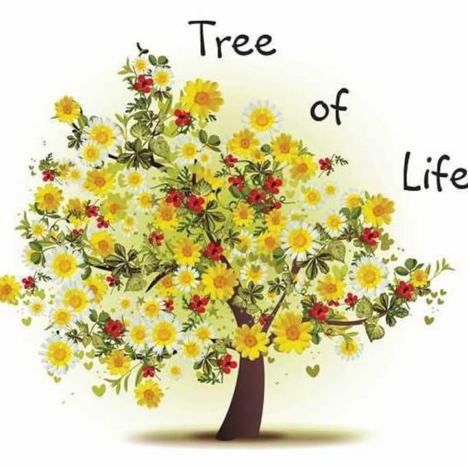 Tree of Life Holistics - our logo - www.treeoflifeholistics.com