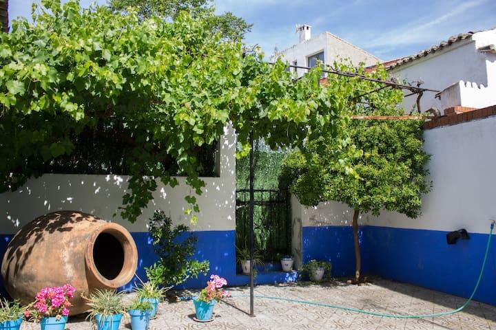 La Casa Azul de la Puebla