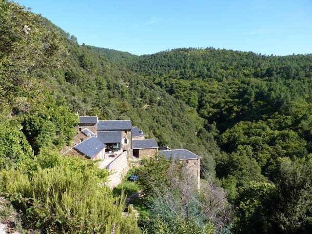 Beautiful hamlet  in the Cevennes - Saint-Étienne-Vallée-Française - Hus
