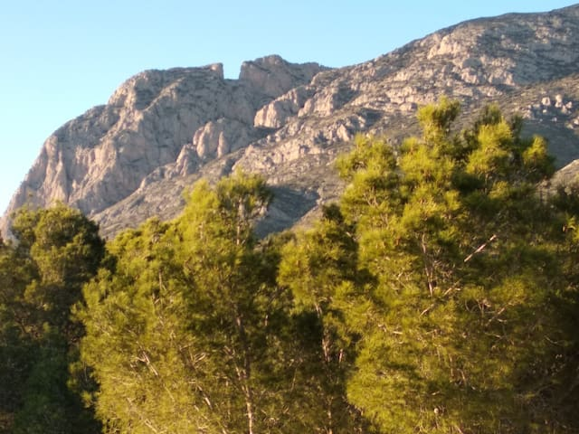 habitación con vista a la montaña