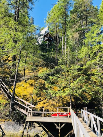 At dock looking back up to Treehouse