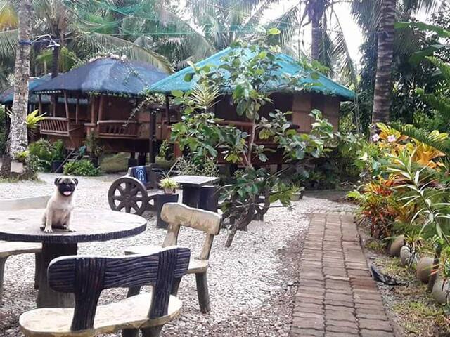 Baler Pleasant Valley Guesthouse - 2pax