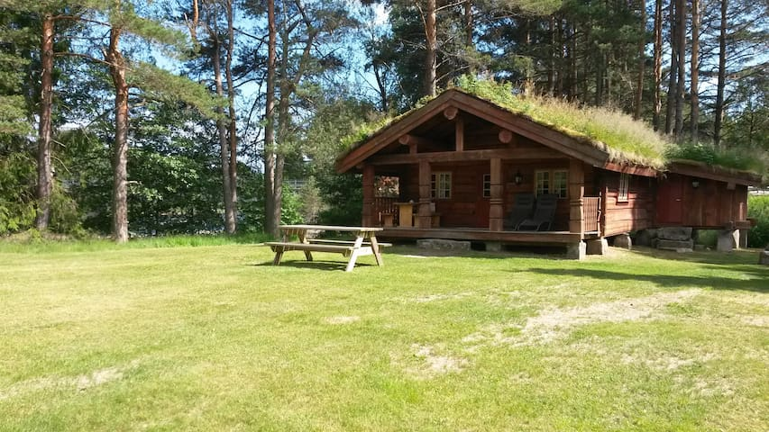 Cosy holiday home by the river in Åmli. Sauna.