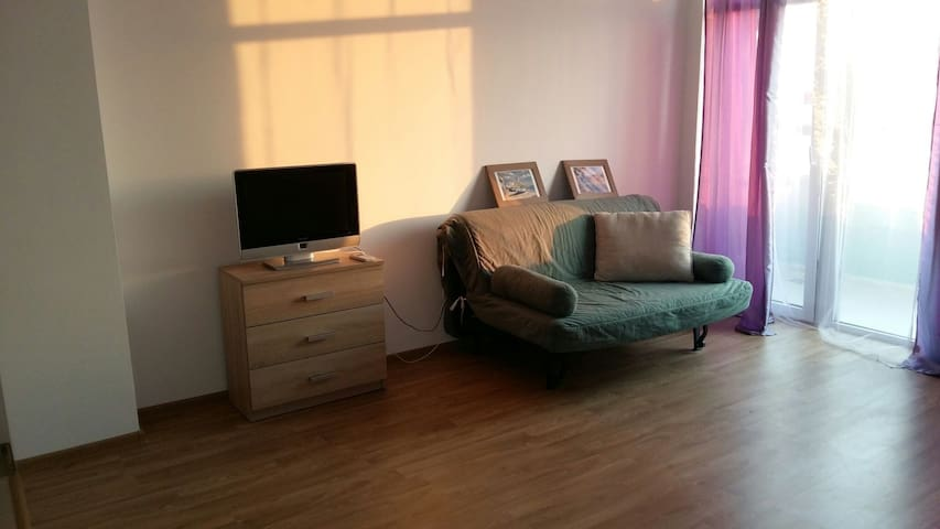 Lovely 2 rooms apart near the sea