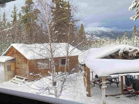 Cozy in the Wild Cabin - The Fox
