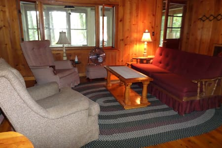 Summer Cottage at Lake Balch - Newfield - Cabin