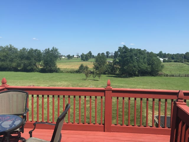 House on 8 1/2 acres - awesome! - Nicholasville