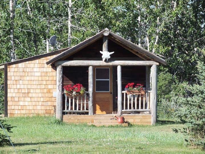 Drywood Creek Hideaway  Daryl's Den