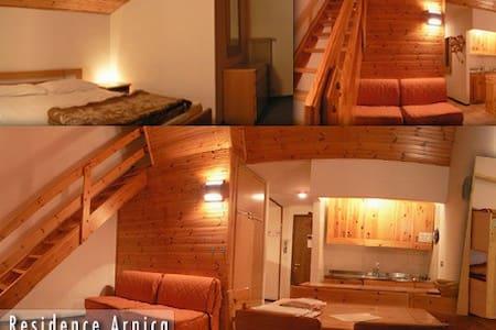 Spazioso sulle dolomiti - Santa Fosca - 公寓