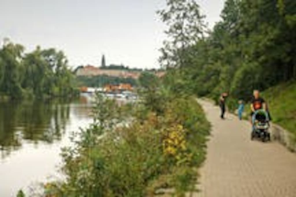 Walking path along Vltava river