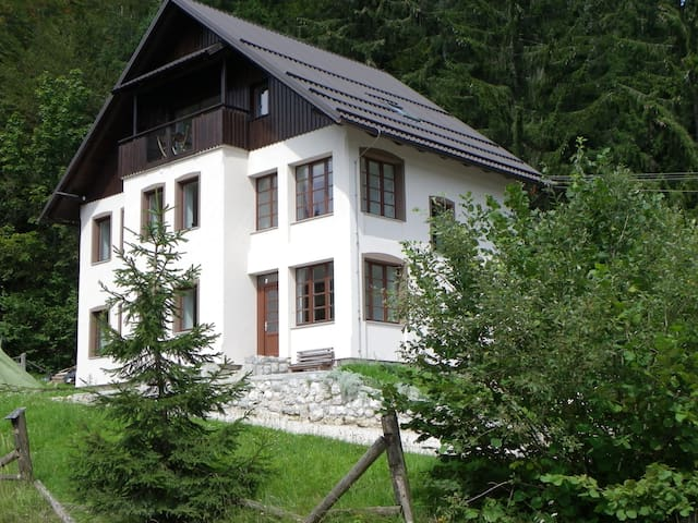 Triglav Park House : Private rooms : Nature House - Bled - Casa