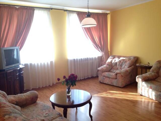 Уютная просторная квартира в центре - Самара - Apartment